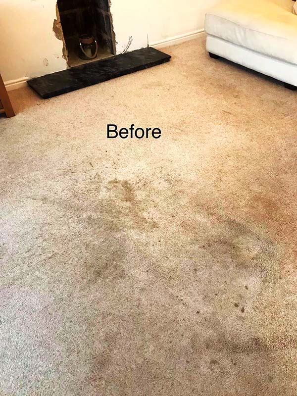 Sedgefield and Wynyard carpet, rug, sofa and upholstery cleaners